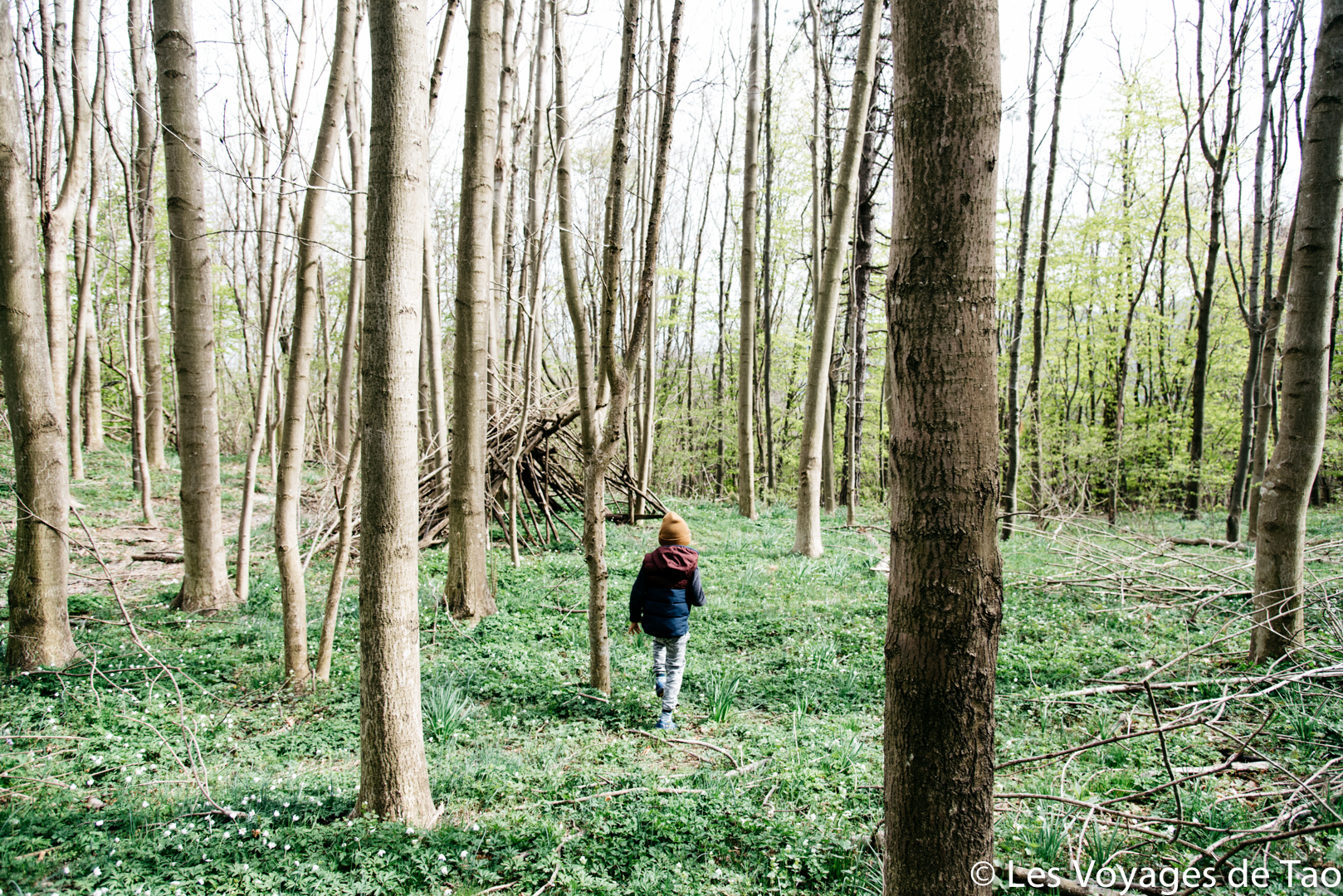 Equipement randonnée enfant Les Voyages de Tao et Les Petits Baroudeurs