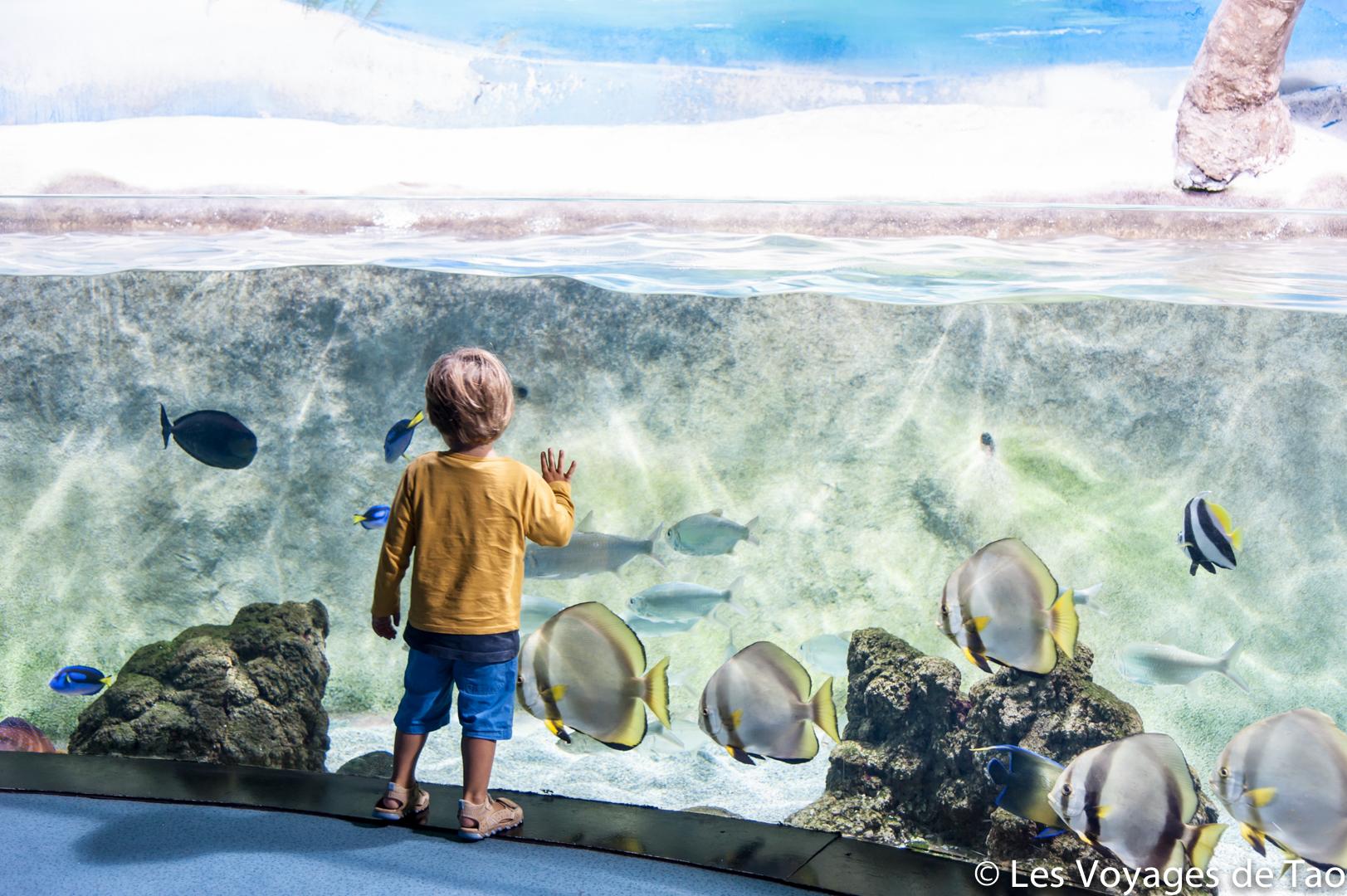 Aquarium de Gijon